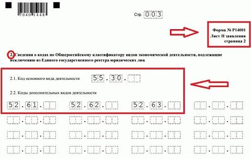 Как прописываются коды ОКВЭД в форме Р14001