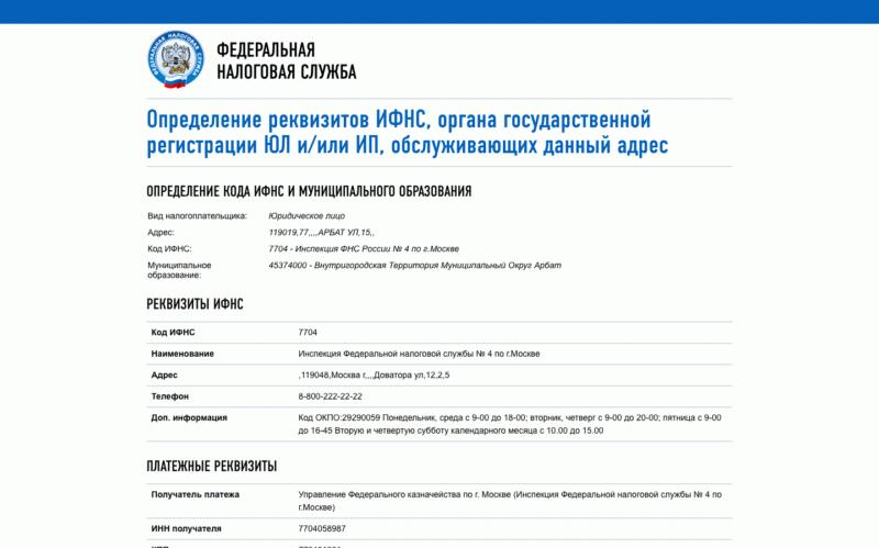 Пример результатов поиска реквизитов на сайте ФНС