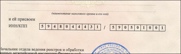 Оба кода в свидетельстве регистрации